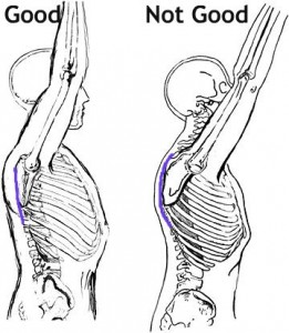 movement bio mechanics