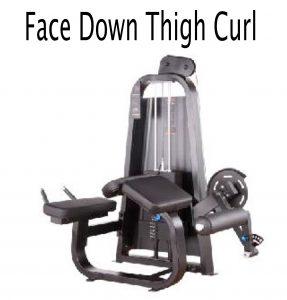 Face down thigh curl